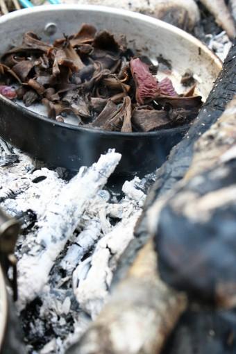 Trompettes de la mort au feu de bois ;)