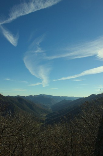 Vallée de l'Hérault vu dans la montée du Mont Aigoual