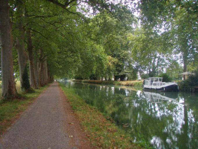 Canal du midi et ses platanes